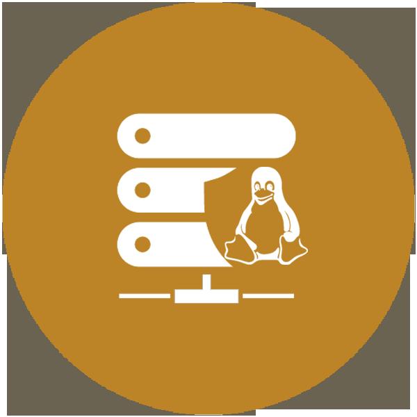 bronze-plan-linux