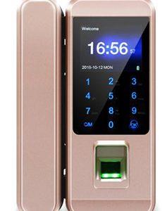 Fingerprint Glass Door Lock